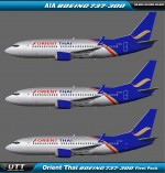 Orient Thai Boeing 737-300w fleet