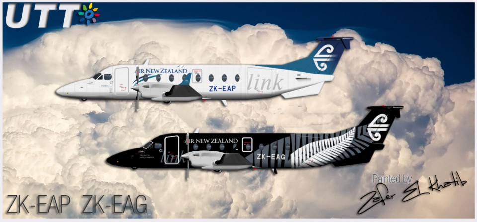Air New Zealand link Eagle Airways Raytheon Beechcraft 1900D ZK-EAG & ZK-EAP