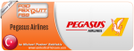 Pegasus Airlines Summer 2014